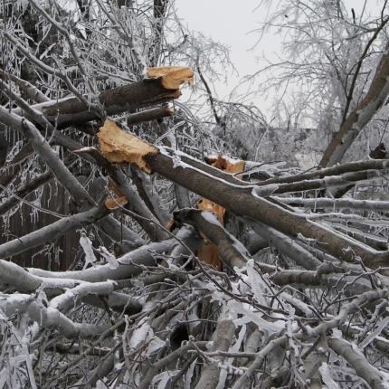 winter-storm-damage